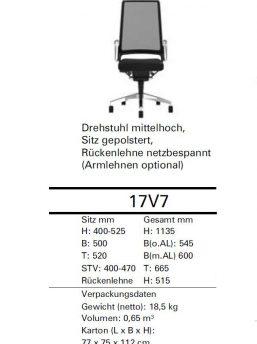 Buerostuhl-Vintage-Interstuhl